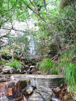 Suikerbossie waterfall hike