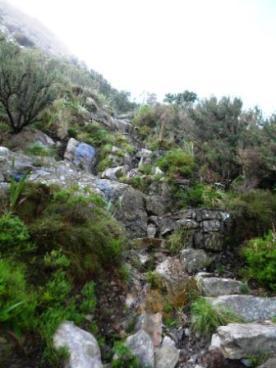 Kasteelpoort Hike (14)
