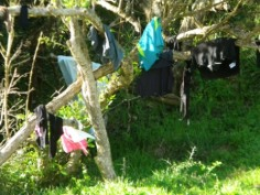 Washing on the Otter Trail