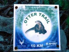 Bloukrans River on Otter Trail