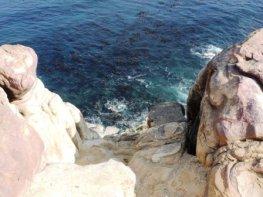 Cape Point Hike