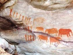 Rock Art Site Cederberg