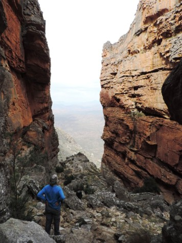 Wolfberg Cracks. Cederberg