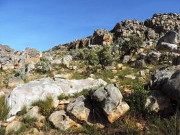 Bokveldskloof hike to the Maltese Cross