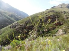 Boesmanskloof Hiking Trail