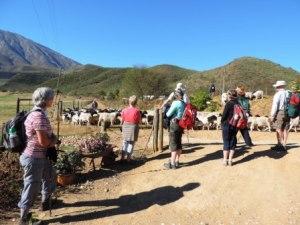Karoo Hike (109)