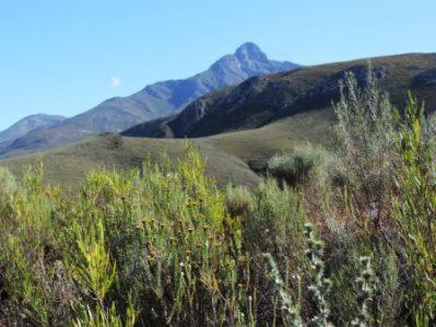 Karoo Hike (129)