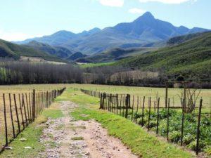 Karoo Hike (151)