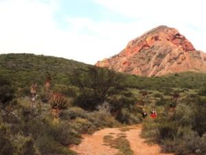 Karoo Hike (83)