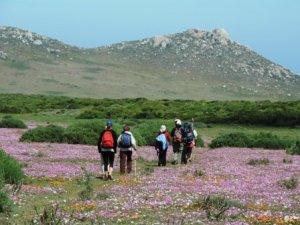 !Khwa ttu and Steenbok hiking trail (166)