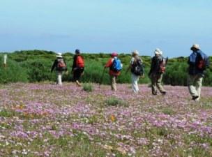 !Khwa ttu and Steenbok hiking trail (172)