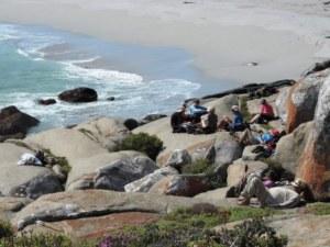 !Khwa ttu and Steenbok hiking trail (205)