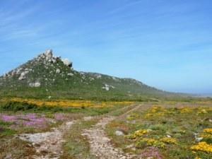 !Khwa ttu and Steenbok hiking trail (207)