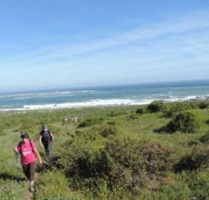 !Khwa ttu and Steenbok hiking trail (210)