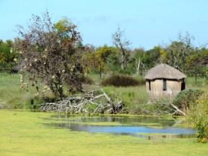 !Khwa ttu and Steenbok hiking trail (38)