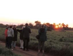 !Khwa ttu and Steenbok hiking trail (69)