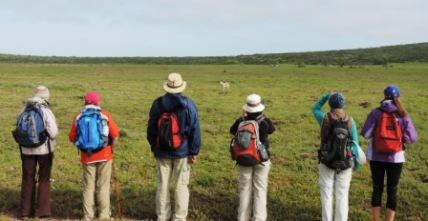 !Khwa ttu and Steenbok hiking trail (95)