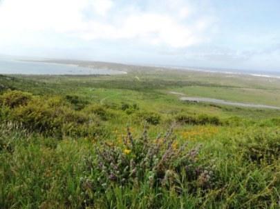 !Khwa ttu and Steenbok hiking trail (99)