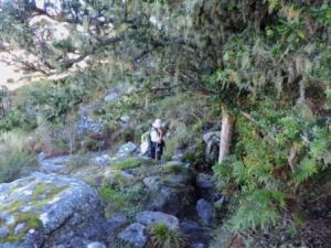 Cecelia Buttress Hike 081