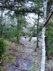 Cecelia Buttress Hike 095