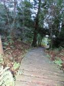 Cecelia Buttress Hike 098