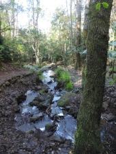 Cecelia Buttress Hike 138