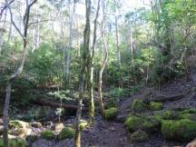 Cecelia Buttress Hike 147