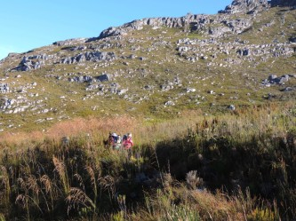Hottentots Holland Nature Reserve 2 day hike