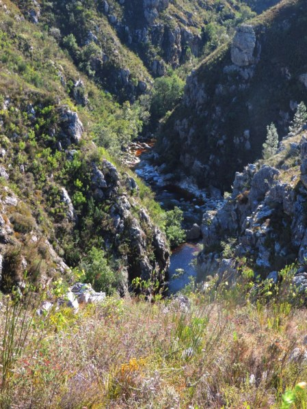 2 day Hottentots Holland Nature Reserve Hike 219
