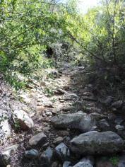 Weekend Hike 006