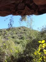 Weekend Hike 018