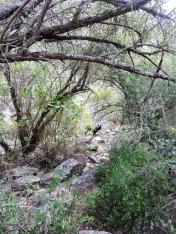Weekend Hike 064