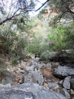 Weekend Hike 067