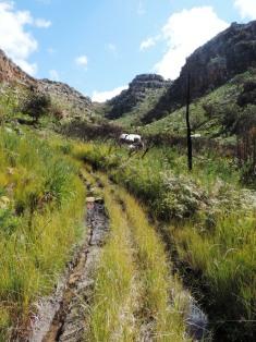 rim-of-africa-1st-traverse-679