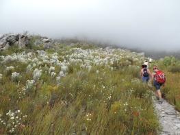 Palmiet Hiking Trail