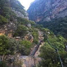 Pipeline Track Hike