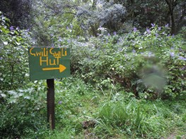 Amatol Hike Day 1 (47)