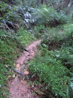 Very muddy and slippery