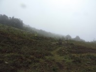 Wet and misty. Last bit of uphill before our hut.