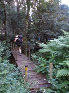 Amatola Hike Day 2 (123)