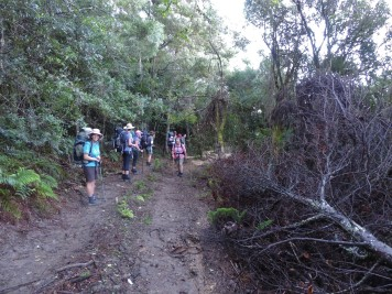 Amatola Hiking Trail - This is when we realized we had gone past the turn-off.