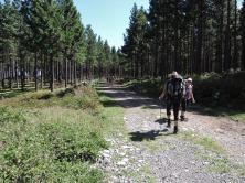 Amatola Hike Day 3 (131)