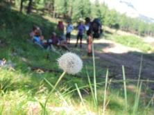 Amatola Hike Day 3 (141)