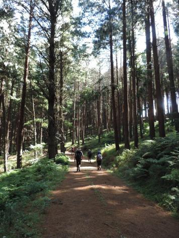 Amatola Hike Day 3 (144)