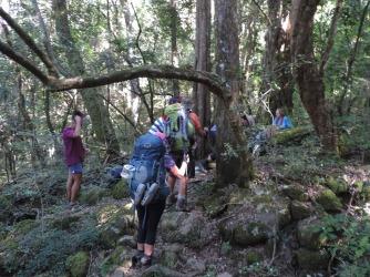 Amatola Hike Day 3 (90)
