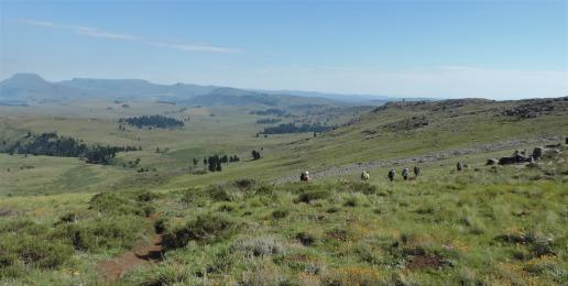 Amatola Hiking Trail