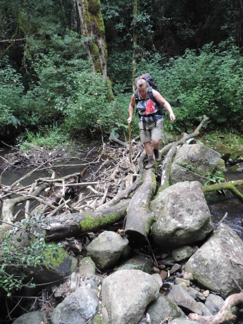 Amatola Hike Day 4 (83)