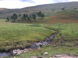 Amatola Hike Day 5 (10)