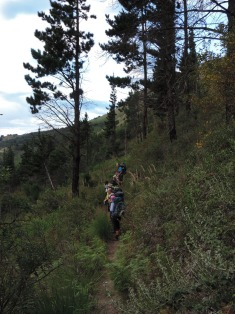 Amatola Hike Day 5 (11)