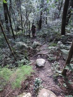 Amatola Hike Day 5 (15)